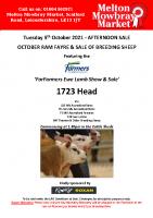 October Ram Fayre & Breeding Sheep Sale October 2021