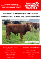 STORE CATALOGUE TUESDAY 5TH & WEDNESDAY 6TH OCTOBER 2021